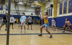 Volley for Life fights cancer