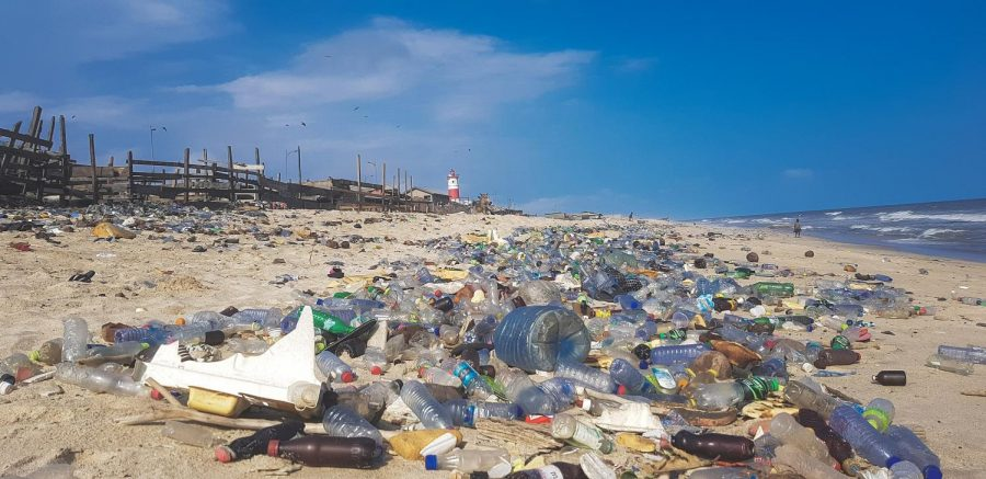 Plastic pollution destroys the beauty of beaches and the ecosystem.