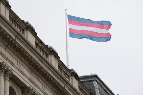 Transgender flag represents transgender rights