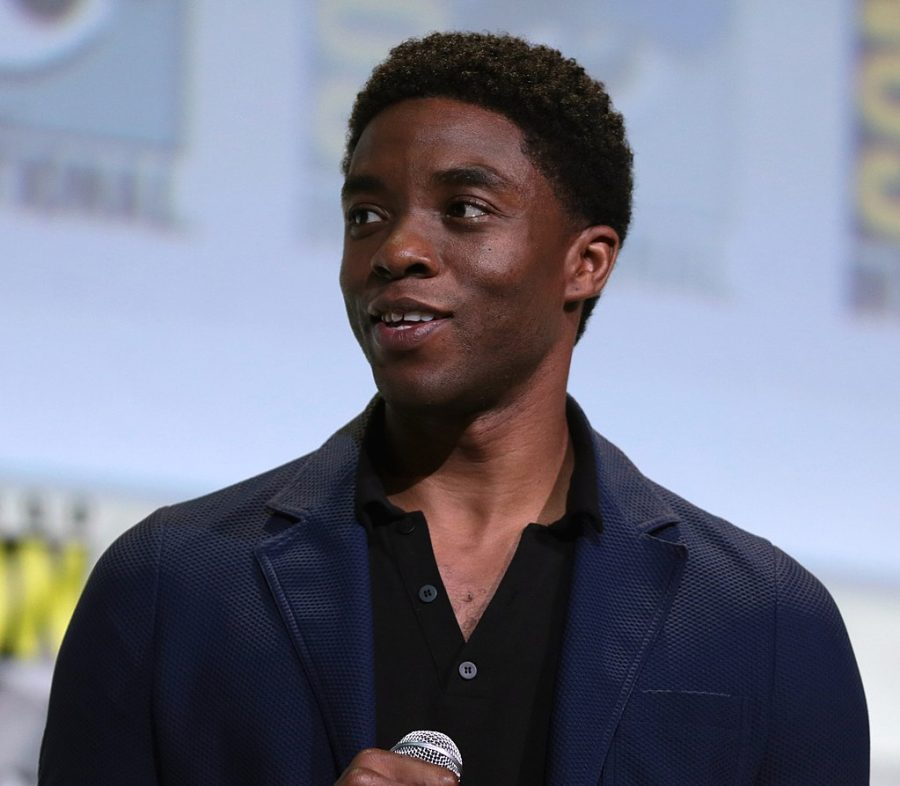 Chadwick+Boseman+at+a+2016+Comic-Con