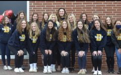 Delaware Valley cheerleading team takes home gold at states