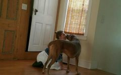 Ms. Zolton loves spending time with her dog when she isnt in the classroom.